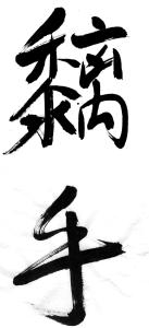 Wing Chun Skill Chi Sau calligraphy