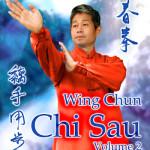 Wing Chun Chi Sau DVD 2
