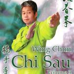 Wing Chun Chi Sau DVD 3
