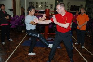 Wing Chun Basic Hands - Taan Sau