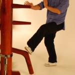 Wing Chun Paak Sau
