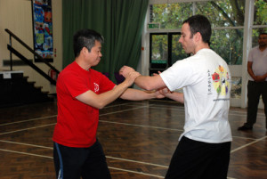 Wing Chun hard and soft lap sau