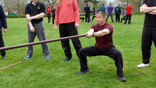 Wing Chun Long Pole