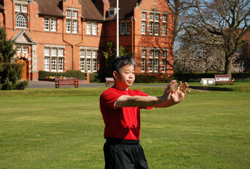 Wing Chun Note, Less forms