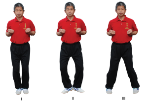 Hoi Ma - opening stance