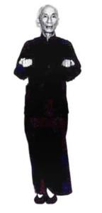 Ip Man stance 103