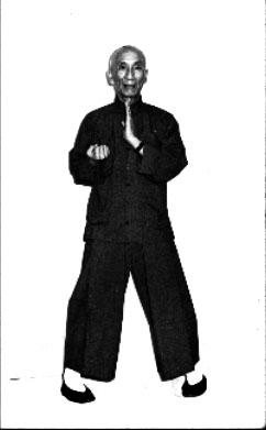 Grandmaster Ip Man's   Yìh Jih Kìhm Yèuhng Máh 二字鉗羊馬