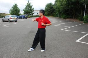 Wan Lan Kuen 橫欄拳