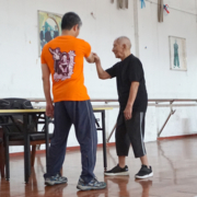 GM Ip Chun teaches Faat Sau