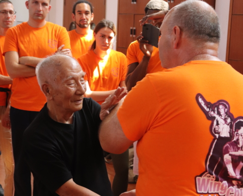 photo Grandmaster Ip Chun using Fāt Sáu 拂手